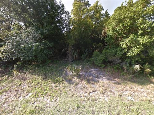 Oversized Camping / Investment Lot : North Port : Sarasota County : Florida