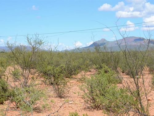 Nice Mh Lot At $75 Per Month : Douglas : Cochise County : Arizona