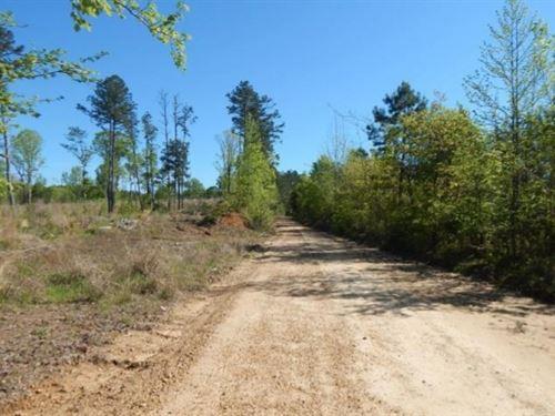 17.8 Acres In Carroll County In Bla : Black Hawk : Carroll County : Mississippi