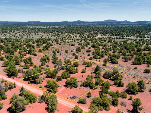 Wooded Property With Ez Access : Williams : Coconino County : Arizona