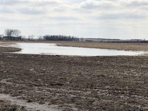 Silver Creek Wildlife Tract 3 : Silver Creek : Merrick County : Nebraska