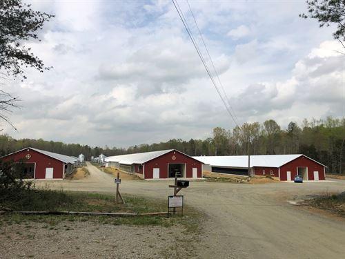 Breeder Poultry Farm, Davidson : Lexington : Davidson County : North Carolina