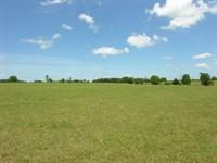 819 Acres On Brier Creek : Waynesboro : Burke County : Georgia