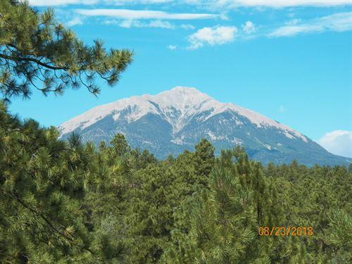 Amazing Spirit Mountain Ranch Lot : Aguilar : Las Animas County : Colorado