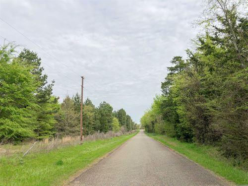 179 Acres Cr 2115 Tract 1011 : Hughes Springs : Morris County : Texas