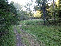 Recreational Property With Excelle : Reeds Spring : Stone County : Missouri