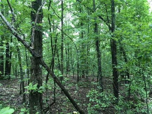 15 Acres, Septic, Electric, Ci : Batesville : Independence County : Arkansas