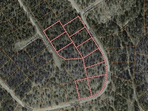 Hunting Land For Sale New Mexico : Timberon : Otero County : New Mexico
