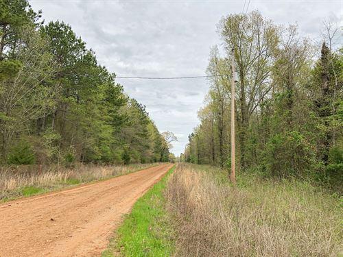 916 Acres Cr 4308 Tract 1004 : De Kalb : Bowie County : Texas