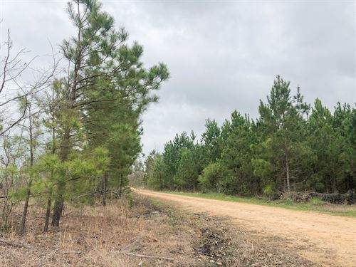 92 Acres Cr 4450 Tract 1001 : Avery : Red River County : Texas