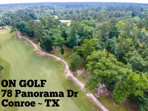 .38 Acres In Montgomery County : Montgomery : Texas