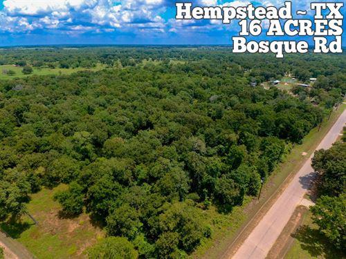 16.14 Acres In Waller County : Hempstead : Waller County : Texas