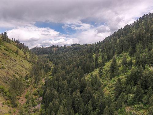 Off Grid Sustainable Property Idaho : Stites : Idaho County : Idaho