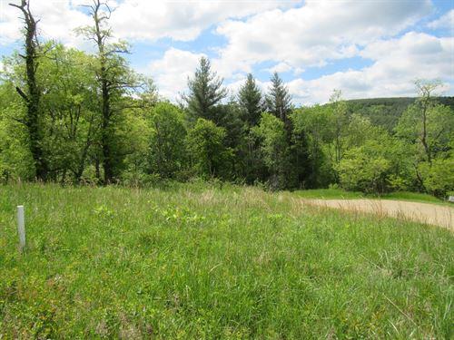 Building Lot Piney Creek NC : Piney Creek : Alleghany County : North Carolina