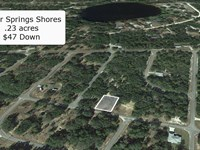 .23 Acre Lot Surrounded By Lakes : Ocklawaha : Marion County : Florida