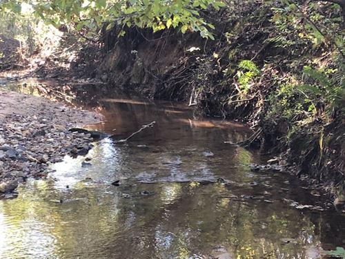 Creek Hunting Homesite : Junction City : Talbot County : Georgia