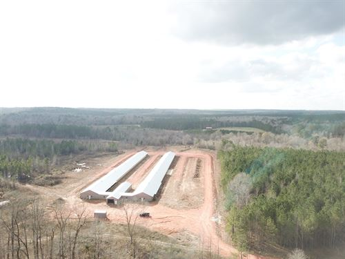 Langham Road Poultry Farm 89+/- Ac : Repton : Conecuh County : Alabama