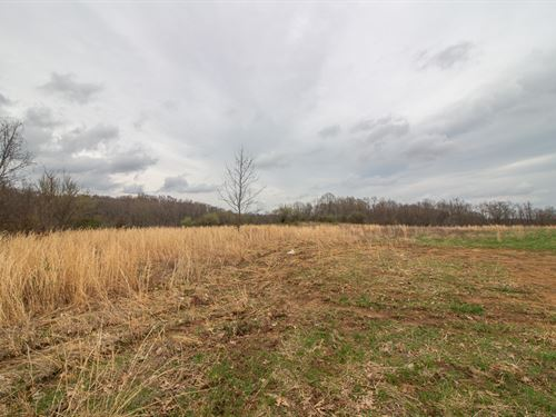 Waibel Farm Rd, 49 Acres : Coolville : Athens County : Ohio