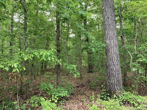 58 Arces Timberland / Development : Fosters : Tuscaloosa County : Alabama