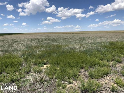 Kiowa County Crp For Sale : Sheridan Lake : Kiowa County : Colorado