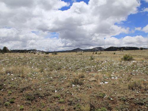 11 + Acres in Westcliffe Custer CO : Westcliffe : Custer County : Colorado