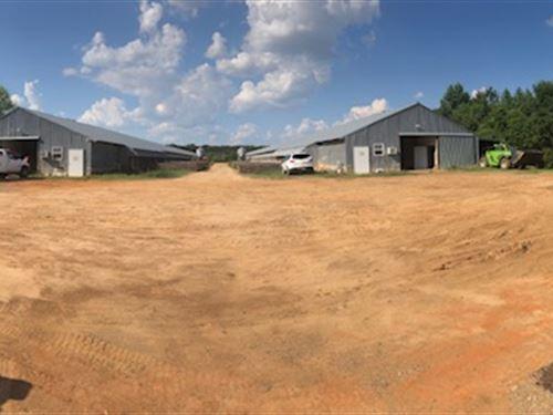 Hicks Breeder Farm-Dale County, Al : Newville : Dale County : Alabama