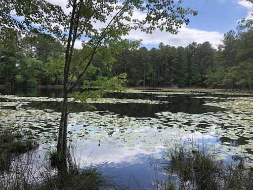 Bookman Loop 46 : Columbia : Richland County : South Carolina