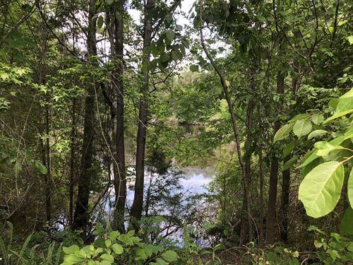 Bookman Loop 35 : Columbia : Richland County : South Carolina