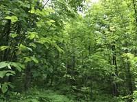 Black River Road : North Bessemer : Gogebic County : Michigan