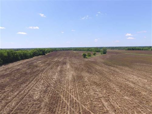 208 Acres of Hunting And Pasture : Hope Hull : Montgomery County : Alabama