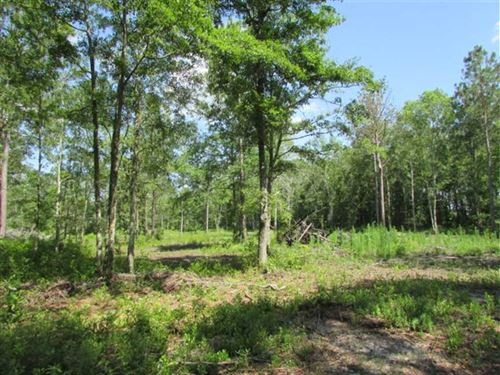 9.67 Acre Residential Tract South : Moultrie : Colquitt County : Georgia
