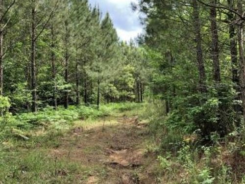 Timber/Recreational Property For Sa : Booneville : Prentiss County : Mississippi