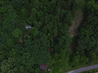 Wooded Acreage, 2 Older : Liberty : Casey County : Kentucky