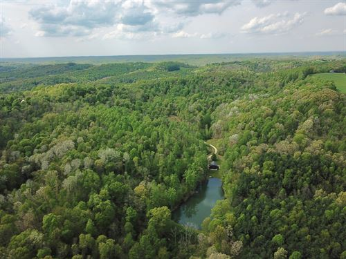 55 Acre Wooded Hideaway : Bowerstown : Harrison County : Ohio