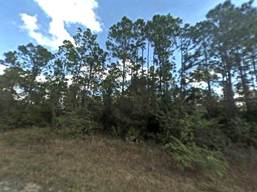Oversized North Port Lot : North Port : Sarasota County : Florida
