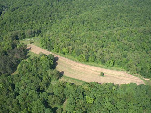 518 Acre Farm Near Leipers Fork : Franklin : Williamson County : Tennessee