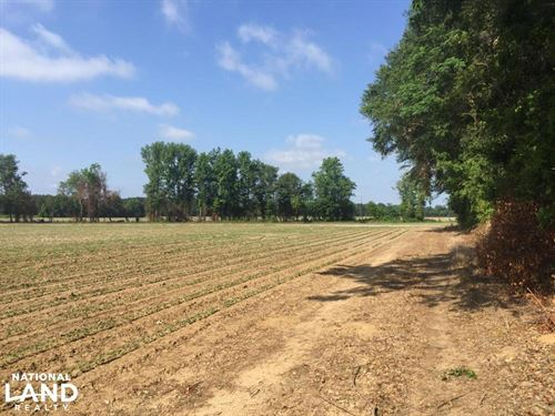 Lydia Farming, Hunting And Recreati : Hartsville : Darlington County : South Carolina