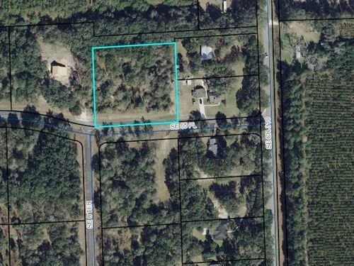 Lot, Homes Only Subdivision : Trenton : Levy County : Florida