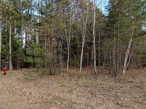 Building Lot Town, Willow River, MN : Willow River : Pine County : Minnesota