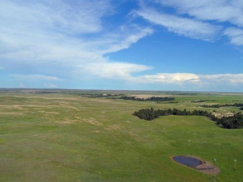West Cherry County Grass : Gordon : Cherry County : Nebraska