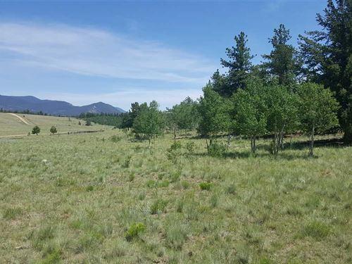 Outdoor Recreation Abounds, Atv : Hartsel : Park County : Colorado