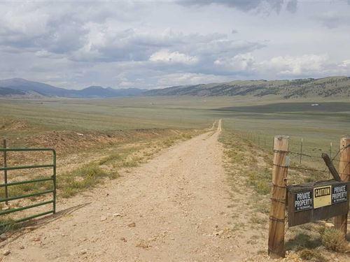 Price Reduced, Rocky Mountain Elk : Fairplay : Park County : Colorado