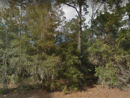 Putnam County, Fl $25,000 : Interlachen : Putnam County : Florida