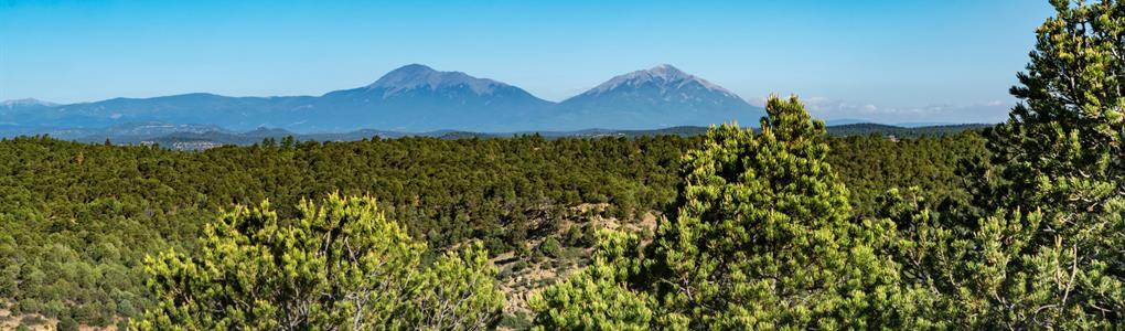 Wooded Mountain Top Land Near Blm : Trinidad : Las Animas County : Colorado