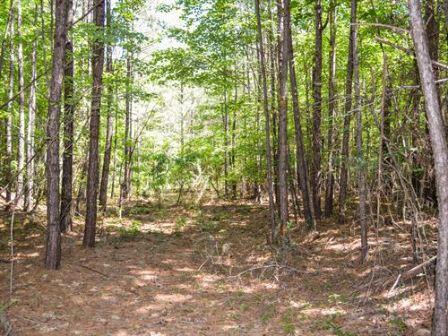 19 Acre Wooded Tract In Union Co : Union : South Carolina
