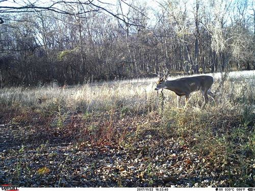 Posey County Indiana Land For Sale : Mount Vernon : Posey County : Indiana