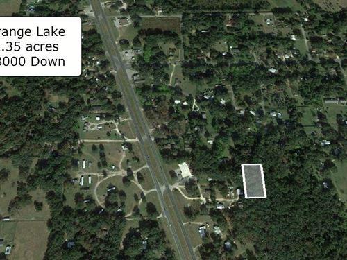Oversized 2.35 Acres For Horse Farm : Reddick : Marion County : Florida