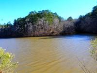 Incredible Lay Lake Frontage : Shelby : Alabama