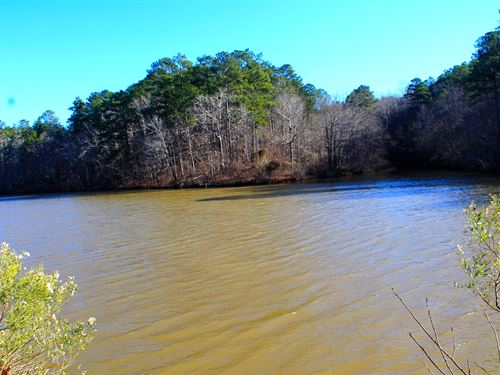 Incredible Lay Lake Frontage : Shelby : Alabama