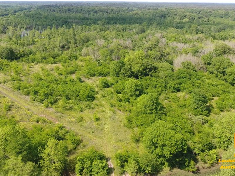 Court Ordered Absolute Land Auction : Colfax : Grant Parish : Louisiana